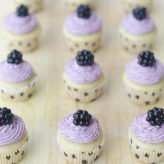 Mini Vegan Vanilla Cupcakes with Blackberry Frosting