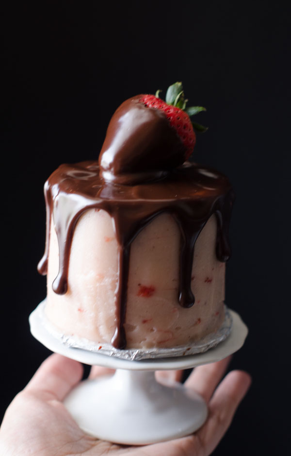 Mini Chocolate Strawberry Cake