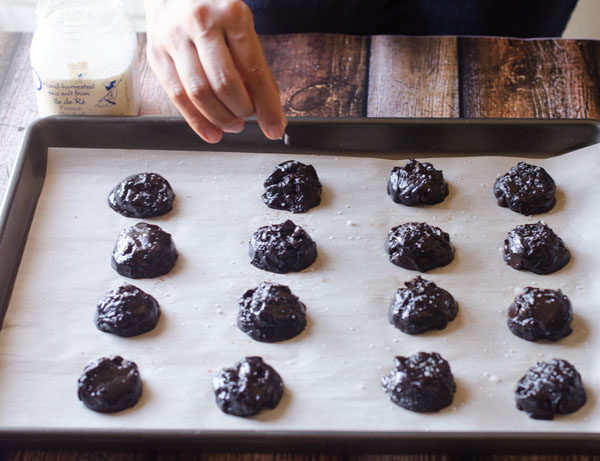 Olive Oil Chocolate Cookies