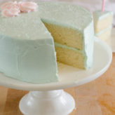 One Bowl Vanilla Cake with Quick Vanilla Buttercream Frosting